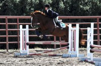 Martha Gustavson jumps at an Intercollegiate Horse Show Association competition on Oct. 16. Since UCSC has no horses or equestrian training facilities, the equestrian team goes to Watsonville to practice for competitions. Photo courtesy of Dana Frederick.