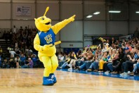 "Sammy the Slug gives away a pizza to hungry fans and the Santa Cruz Warriors ""UCSC Night"". Photo by Daniel Green."