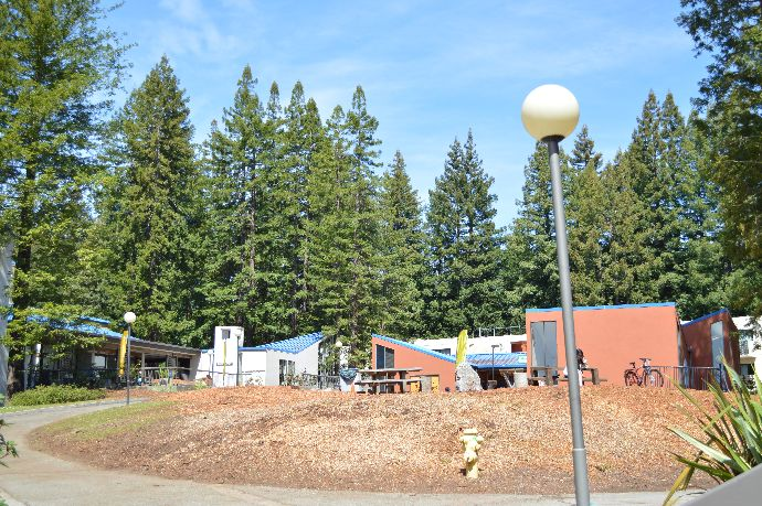 Merrill Renewal Project – This Week in Pictures