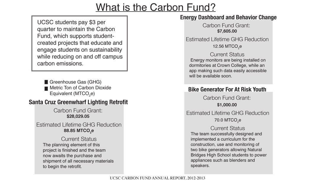 Supporting Sustainable Projects Through the Carbon Fund