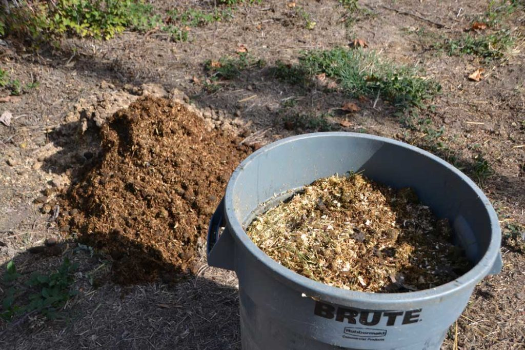 Green waste (top) and animal feces in combination with water and non-animal based food scraps make the best compost. Photo by Matthew Tsuda.