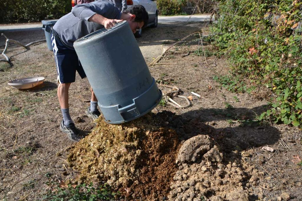 Student Ryan Goldberg begins to layer his compost pile with straw. After additional layers the compost will be complete. Photo by Matt Tsuda.