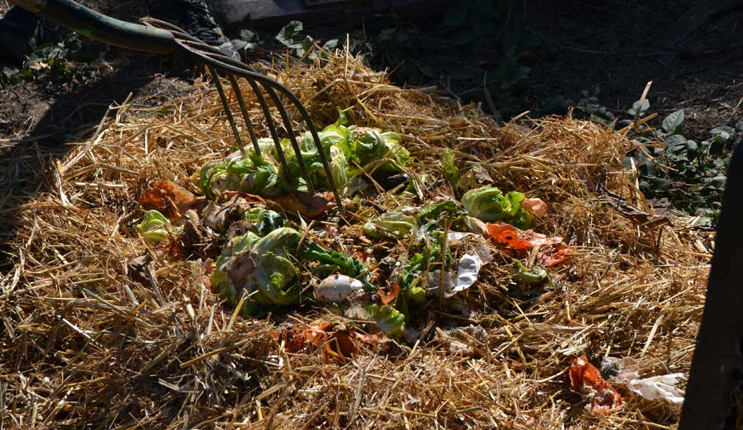 Compost: A Path to a Greener Community