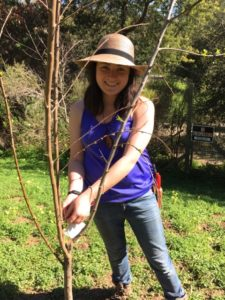 Christine King took this photo of Jenna Rose Fiorello while she was pruning fruit trees in their garden.