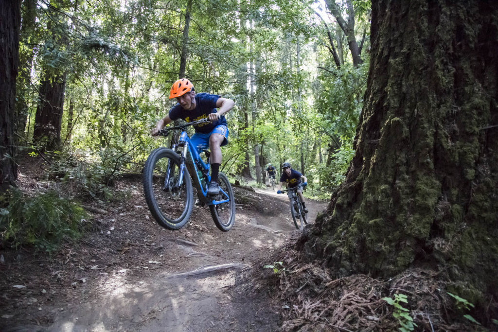 Mark Tinglewald (front) and Walker Busby (behind), both members of the UCSC mountain biking team, shred down the Emma McCrary Trail in Pogonip, one of the legal single-track trails in Santa Cruz. Photo by Jasper Lyons