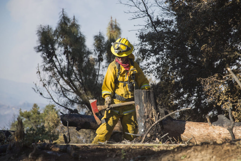 A Cal Fire worker maintains the containment line on the western edge of the fire perimeter along Loma Prieta Road. Photo by Casey Amaral.