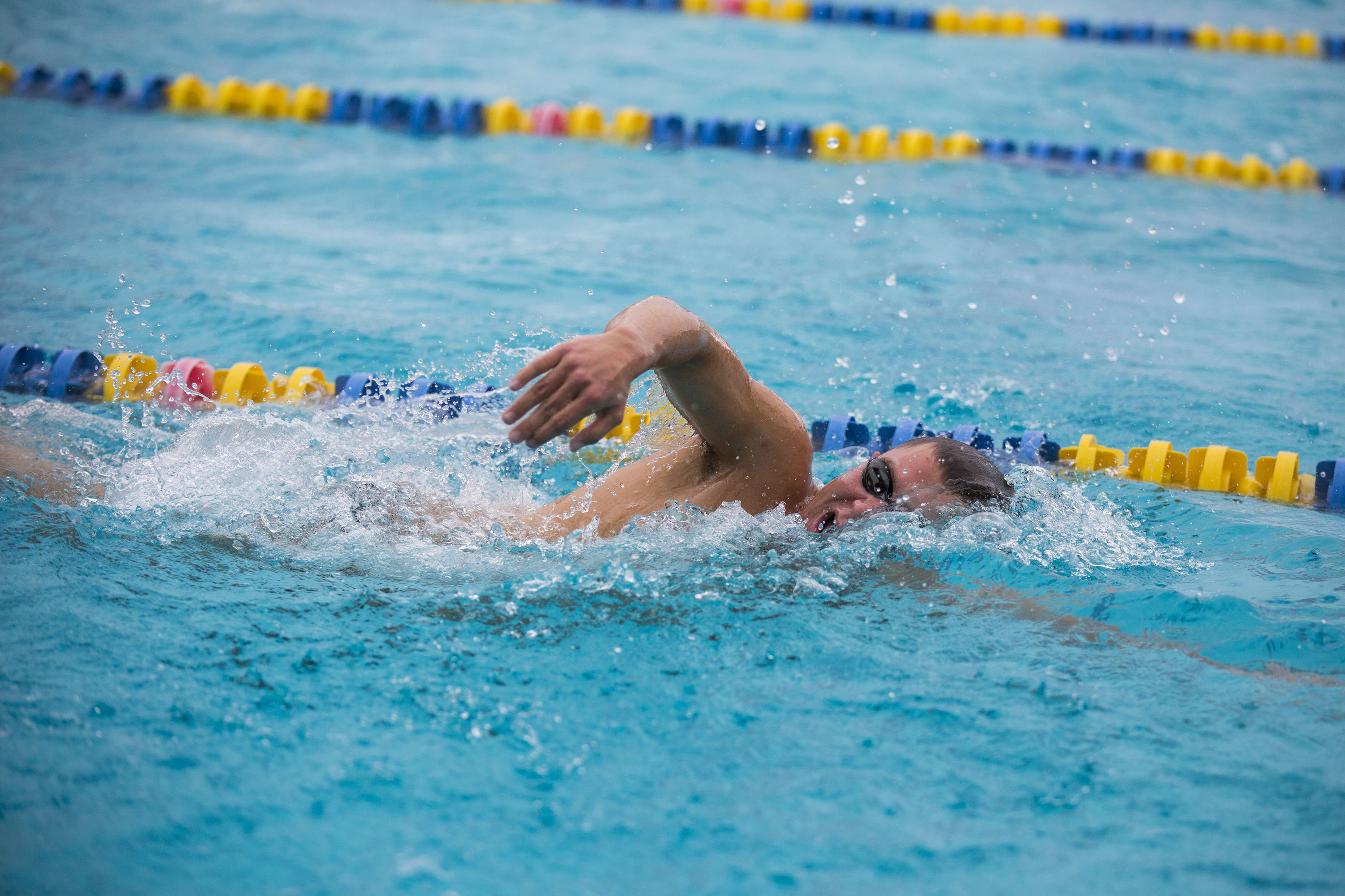 The UCSC swim and dive team prepares to compete in the Pacific Collegiate Swim and Dive Conference (PCSC) championships in L.A. in February. Photo by Casey Amaral