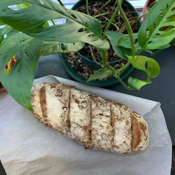 A loaf of the finished bread with a plant.