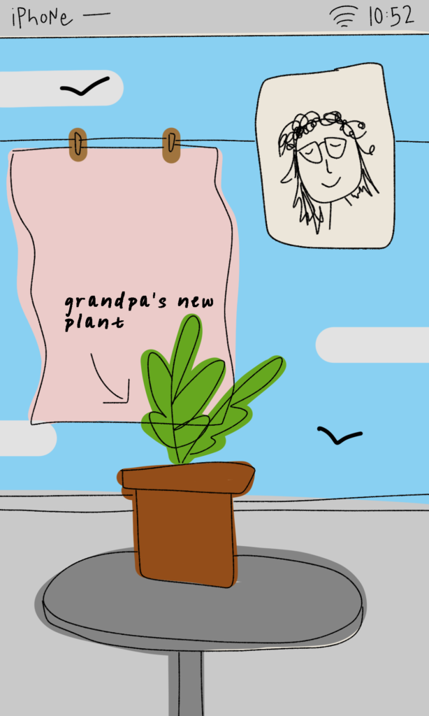 An illustrated video call screen showing a potted plant on a table with a pink towel hanging from a line.