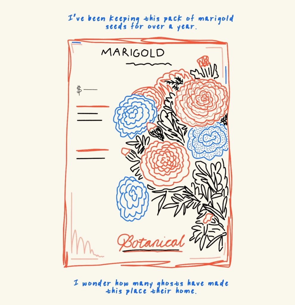 """A packet of Marigold flower seeds. Blue text reads """"I've been keeping this pack of marigold seeds for over a year. I wonder how many ghosts have made this place their home."""""""