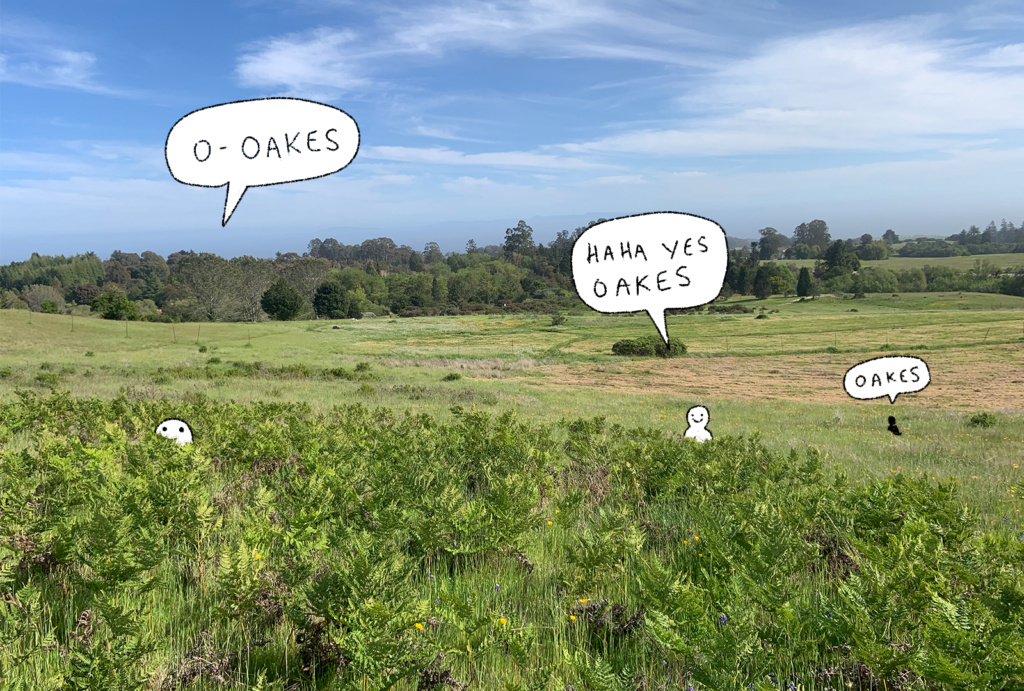 """A photo of Oakes Meadow. It's sunny. There are speech bubbles reading """"Oakes!"""""""