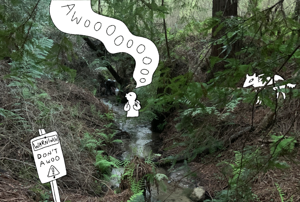 """A photo of Pogonip Creek, with an illustrated figure yelling """"awooooo"""""""