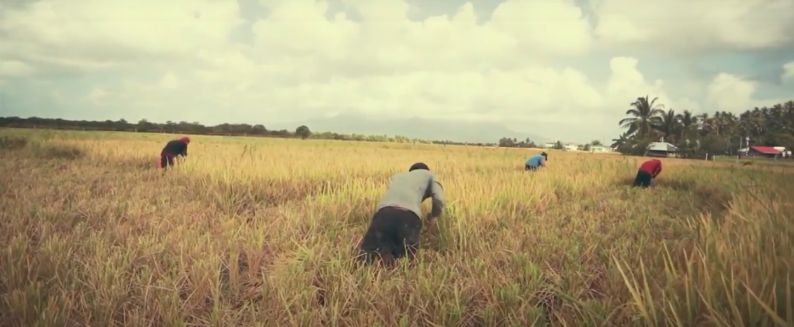 From the Field to Your Table: How Corporate Growers Exploit Farmworker Vulnerability