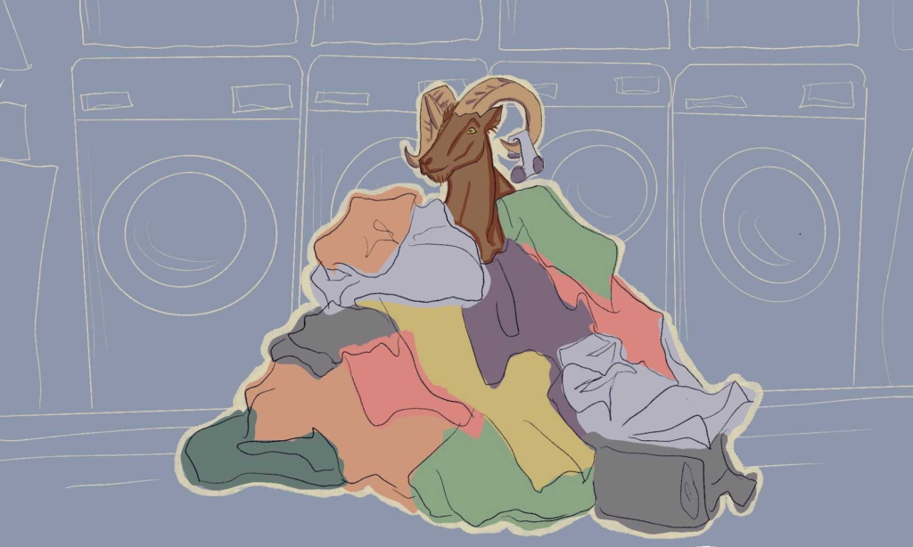 A ram inside a pile of clothing at a laundromat.