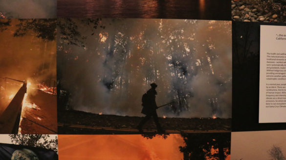 A photograph of a Firefighter amongst a dying forest fire.